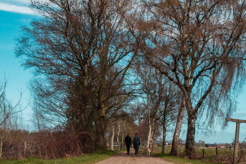 wandelen op de raatakkerweg